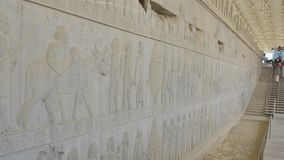 Persepolis relief wall stock video
