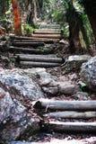 Perseverance island 3. Steps up passage peak, Whitsundays royalty free stock photo