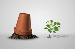 Persevere. And powerful and power concept as an upside down flower pot with a sapling plant breaking through as an endurance and tenacity to persist and survive Royalty Free Stock Photos