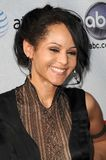 Persia White Stock Photography