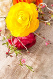 Persian buttercup Royalty Free Stock Photography