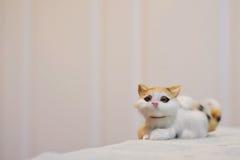 Persian Cat Dolls. Royalty Free Stock Photos