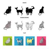 Persian, Cornish rex and other species. Cat breeds set collection icons in black, flat, monochrome style vector symbol. Stock illustration Stock Photo