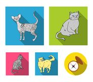 Persian, Cornish rex and other species. Cat breeds set collection icons in flat style vector symbol stock illustration.  Stock Photo