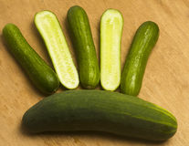 Persian mini cucumbers Stock Images