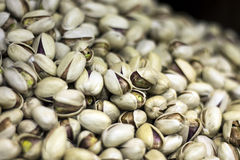 Persian pistachio Stock Photography