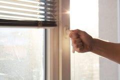 Persiana masculina de la ventana de abertura de la mano por mañana soleada Espacio vacío foto de archivo