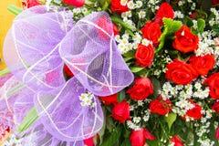 Persianas de la rosa del rojo Foto de archivo libre de regalías