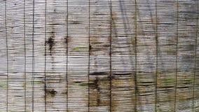 Persianas del bambú Fotografía de archivo libre de regalías