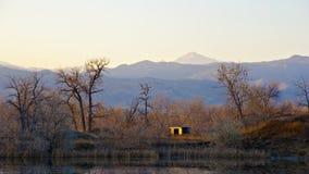 Persianas del pato por un lago fotos de archivo