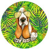 Persiga el afloramiento en gafas de sol en un marco redondo Hojas de palma libre illustration