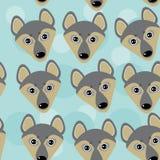 Persiga el modelo de Wolf Seamless con la cara animal linda divertida en un azul Fotografía de archivo libre de regalías