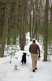 Persiga la caminata a través de bosque Imagen de archivo libre de regalías