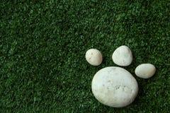Persiga la pata del ` s hecha de piedra del guijarro en hierba verde Imagen de archivo libre de regalías
