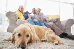 Persiga la relajación en la manta con la familia en fondo Foto de archivo libre de regalías