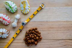 Persiga petiscos, o colar amarelo e o alimento da pelota imagens de stock