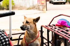 Persiga sentarse en la motocicleta que va a viajar Imagen de archivo libre de regalías
