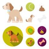 Persiga sentarse, situación del perro, pelota de tenis, heces Iconos determinados de la colección del perro en la historieta, acc ilustración del vector