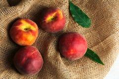 persika Arkivfoton
