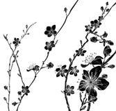Persika Cherry Blossom Flowers Background Pattern stock illustrationer