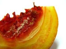 persika för 6 samling Royaltyfri Foto