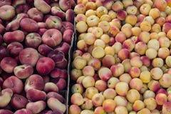 Persika och andra frukter i marknaden Arkivfoto