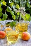 Persikafruktsaft Fotografering för Bildbyråer