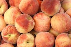persikor Arkivfoto