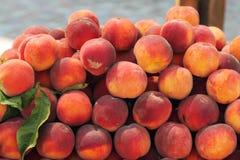 persikor Arkivfoton