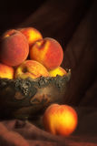 Persikor i bunke Arkivfoton
