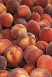 Persikor i en jätte- persikahög royaltyfri bild