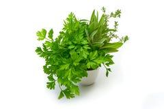Persil, céleri, sauge, thym, feuilles fraîches sur le fond blanc Photographie stock