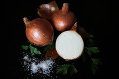 Persil de poivre de sel de nature de nourriture d'oignon photo libre de droits