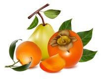 persimmon αχλαδιών καρπών ώριμο tangerine Στοκ Εικόνες