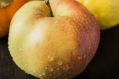 Persimmon και λεμόνι της Apple στον πίνακα Στοκ εικόνα με δικαίωμα ελεύθερης χρήσης