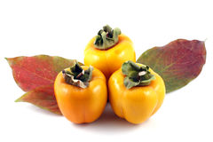 Persimmon. On white background. Close Up Royalty Free Stock Photos