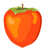 The persimmon. Isolated on white. Vector illustration Royalty Free Stock Photos
