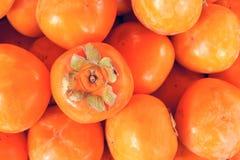 Persimmon Royaltyfria Bilder