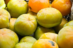 Persimmon Obrazy Royalty Free