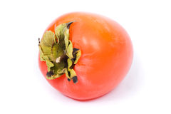 Persimmon (Diospyros) royalty free stock photo