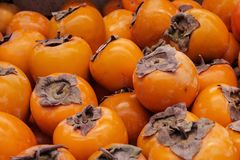 Persimmon dusty and not washed out a multitude of orange fruits. Healthy food Royalty Free Stock Photos