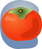 Persimmon fruit illustration Stock Images