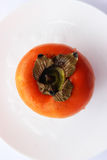 Persimmon. Happy all for its unusually delicate and sweet taste royalty free stock photo