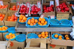 Persimmon in Japan Royalty Free Stock Image