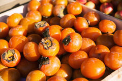 Persimmon. Tray with ripe fruits of a persimmon Stock Photos