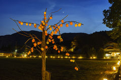 Persimmon tree light up and light festival in Arashiyama area Royalty Free Stock Images