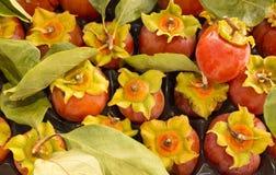Fresh fruit kakis - Diospyros kaki Royalty Free Stock Images