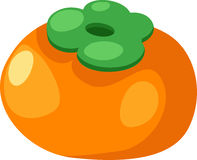 Persimmon vector. Persimmon solated illustration on white background vector Royalty Free Stock Image