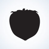 Persimmon. Vector drawing Royalty Free Stock Images