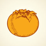 Persimmon. Vector drawing Royalty Free Stock Photos
